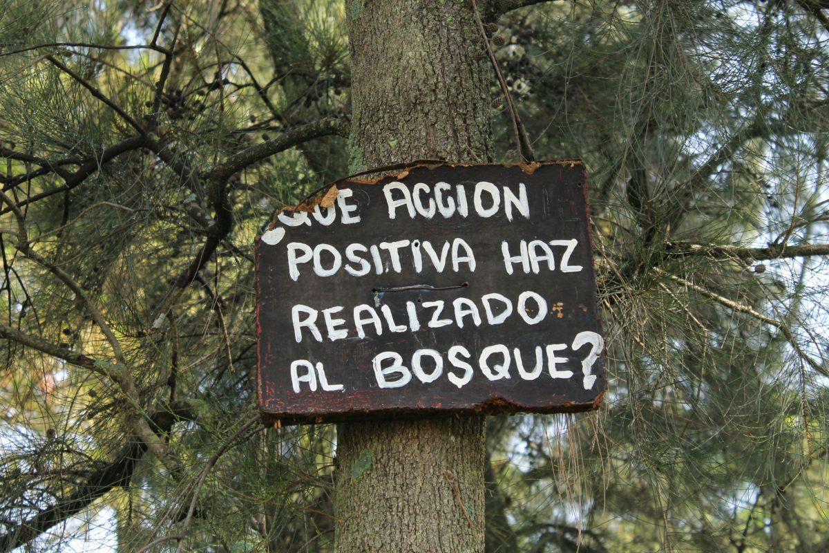 Zona Forestal Lomas de Zapopan