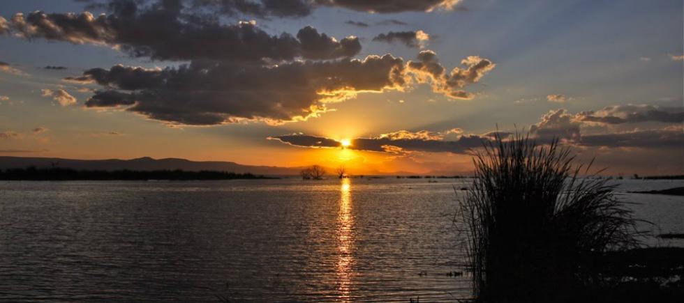 Lago de Chapala, vista desde Jamay