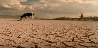 """""""La leche y el agua"""", Celso García 2006."""