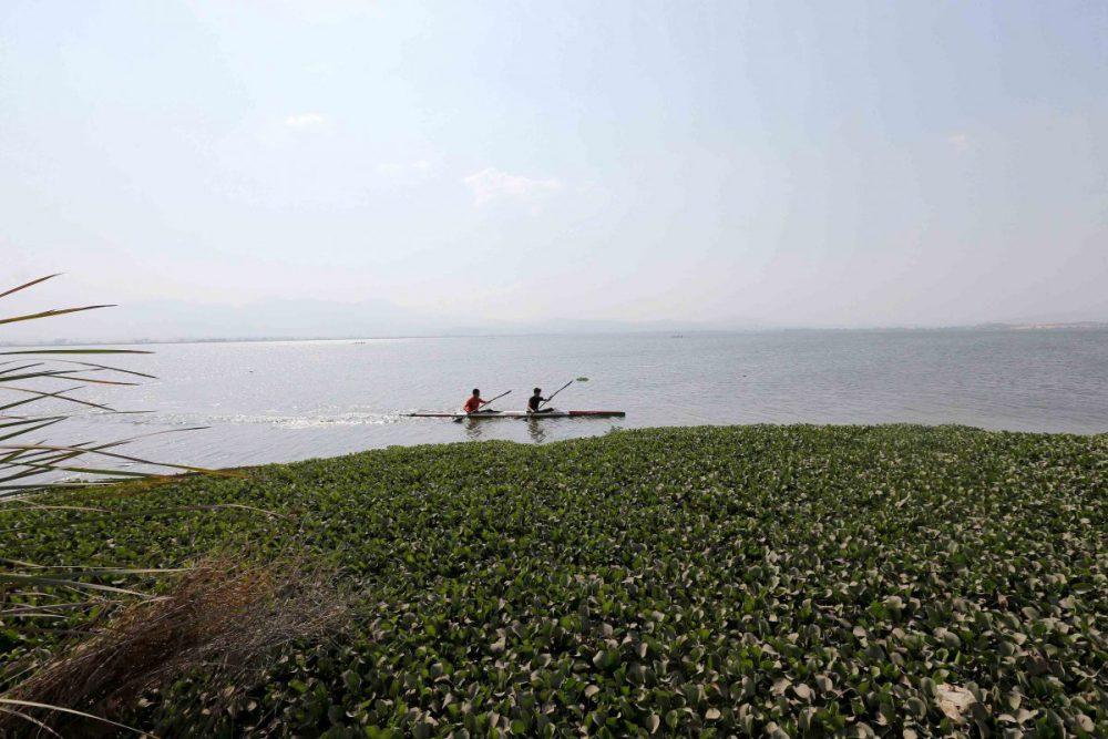 Laguna de Zapotlán