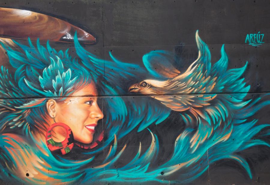 """Grafiti: """"Nuevas miradas sobre el arte urbano en Guadalajara"""". Foto: José Hernández Claire. Obras de Aréuz, """"Meetings of style"""" 2014"""