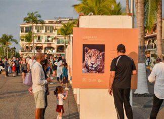 """""""Jaguares"""", en Malecón de Puerto Vallarta"""