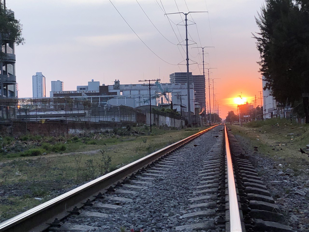 Vías del Tren en Guadalajara, rumbo al poniente de la ciudad