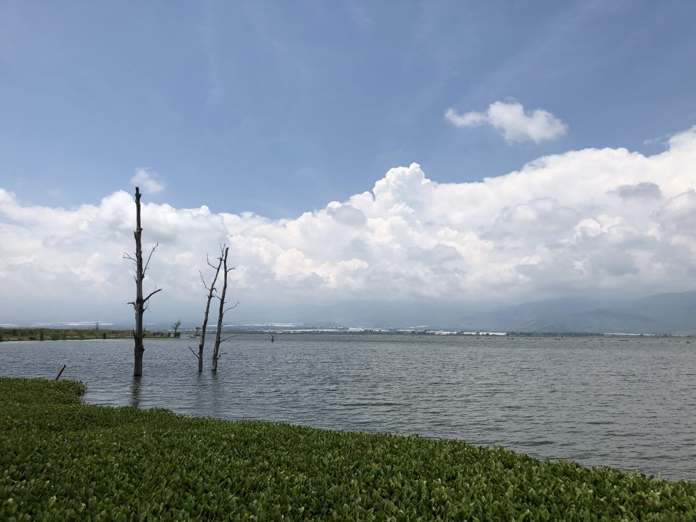 Lago de Zapotlán. Foto: Iván Serrano