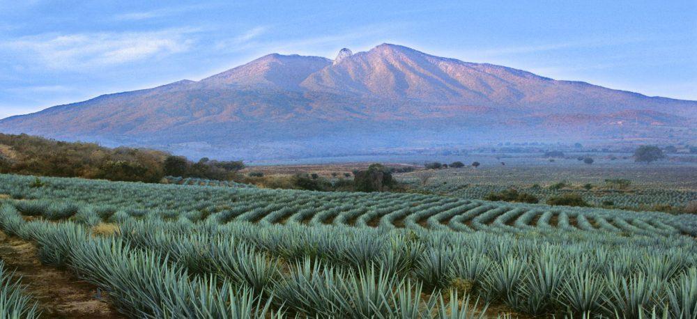 Volcán de Tequila. Paisaje Agavero, Secturjal
