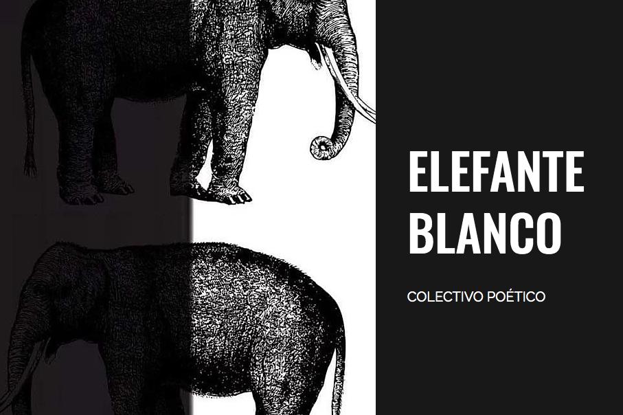 Colectivo Elefante Blanco