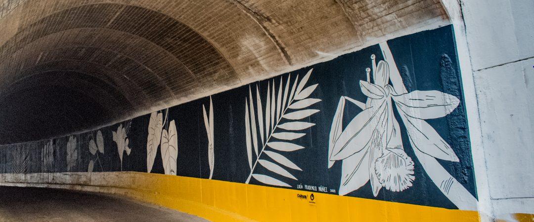 Tunel Chico en Puerto Vallarta