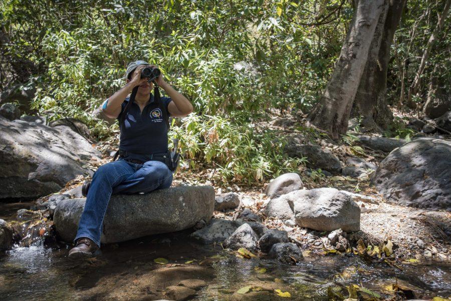 Académica del CUCSur recibe premio internacional por su trabajo en la conservación de aves