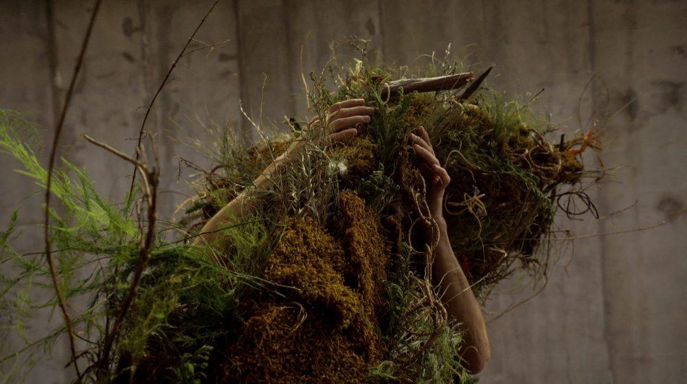 """Verdesaparecer"", de Karen de Luna"