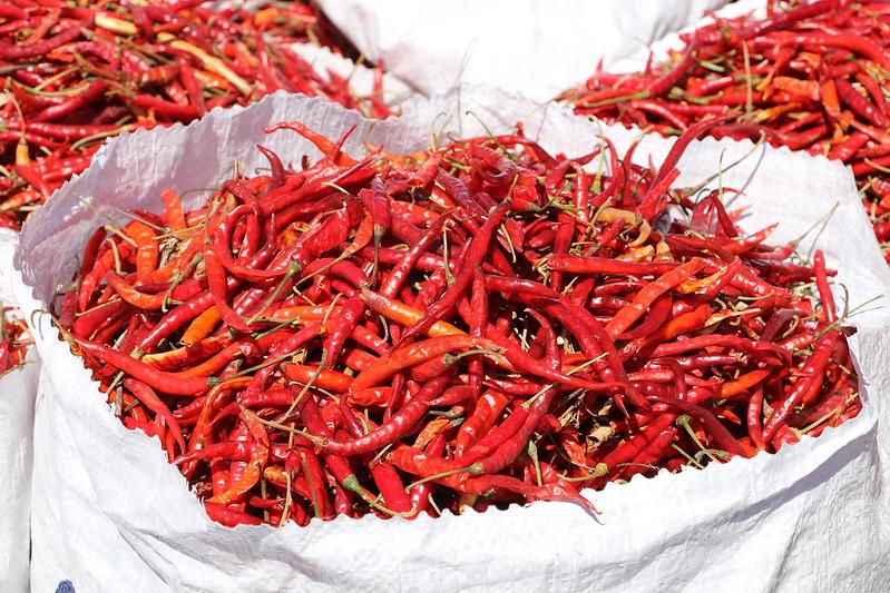 Chile de Yahualica