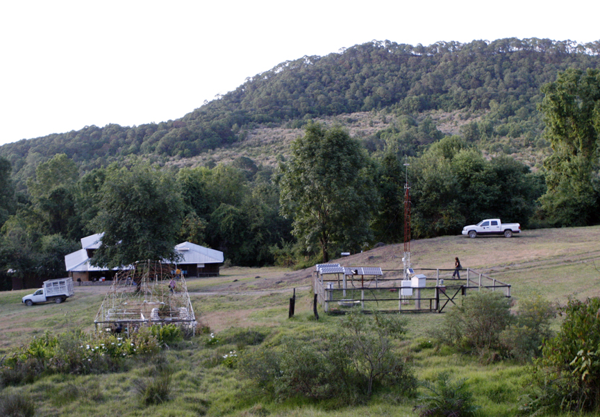 Sierra de Manantlán